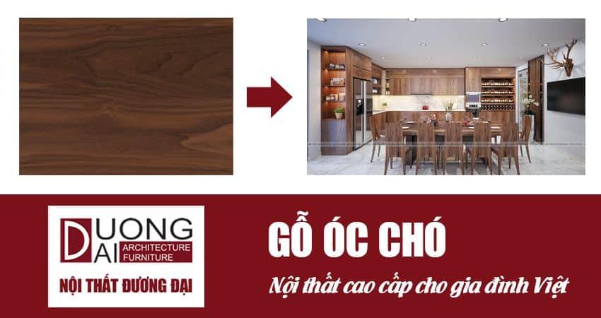 Gỗ óc chó - Dòng gỗ nhập khẩu cao cấp cho nội thất Việt