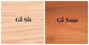 Màu sắc và đường vân của hai loại gỗ